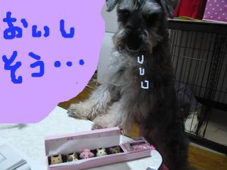 snap_jirokkosan_201013222836.jpg