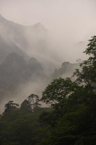 谷川岳 トマ (23)