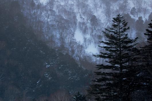 2010 01 17_1293 湯の湖、竜頭の滝、華厳の滝 D70s (21)0