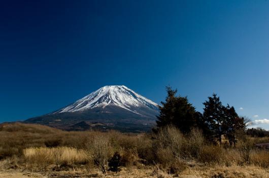 2010 01 24_1429 Mt,Fuji D70s (61)