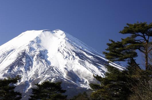 2010 01 24_1371 Mt,Fuji D2x (11)