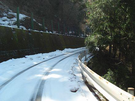 雪道になってきました