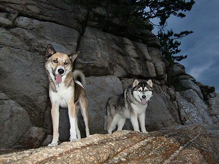 岩場に立つジョンと健太