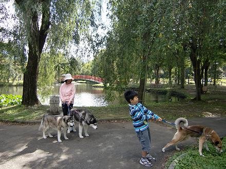 湯沢中央公園で散歩