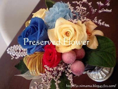 080630Preserved-Flower.jpg