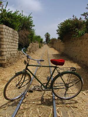 ルクソール郊外サイクリング⑤