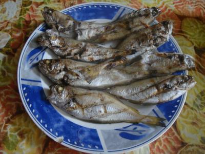 焼き魚@エッサウィラ