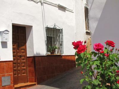 花の赤と、壁の白