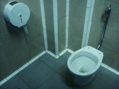 中途半端トイレ@サン・セバスチャン