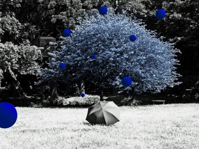 coll-blue_falling_on_umbrella-1.jpg