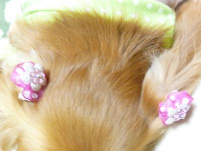 ピンクの耳飾