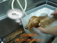 寝てる~☆
