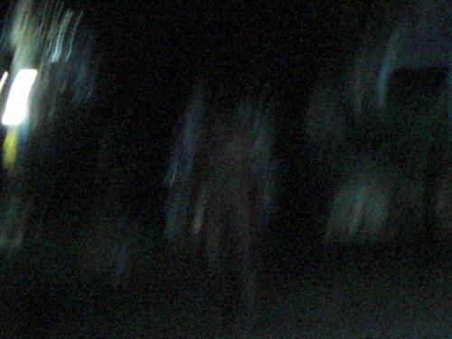 CIMG1786_convert_20090624144450.jpg