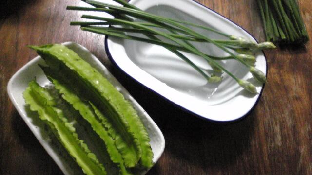 野菜ビバImage