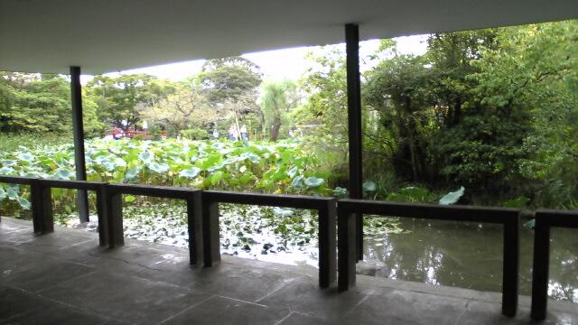 九鎌倉十Image