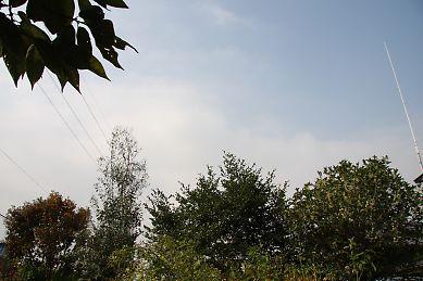 s_026_20081010113544.jpg