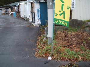 店入り口の旗01