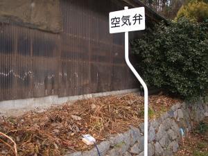 鶏舎の南側石垣の上01