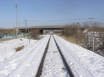 20100131-7.jpg