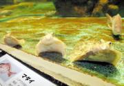 八戸市水産科学館マリエント提供