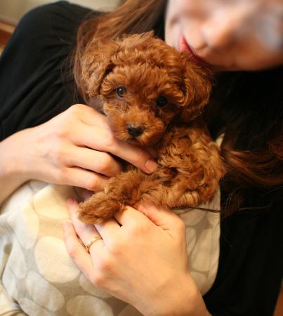 with misaさん1