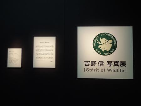 2012.02.10. 吉野信 DSCN1659