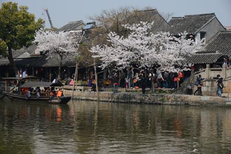 2012.04.上海 800_4245