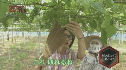 _TV_ 20080618 cartoon KAT-TUN _Kame part_(10m40s)[(005846)13-26-31]