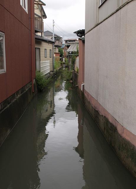 網干の水路