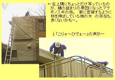 屋根の軒樋の清掃
