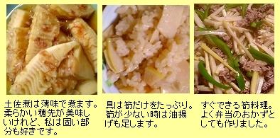 タケノコ料理1