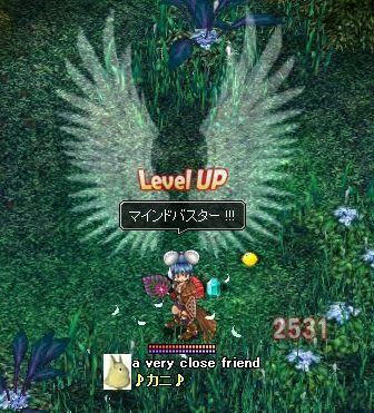 6.6カニ46レベル羽披露2