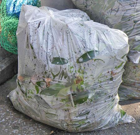 081004煙草をくわえたゴミ袋