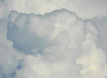 080813犬雲