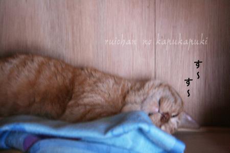 20080713_mitawane_001.jpg