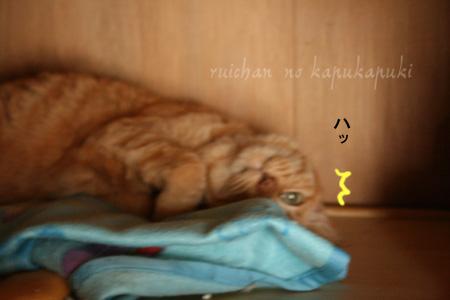 20080713_mitawane_002.jpg