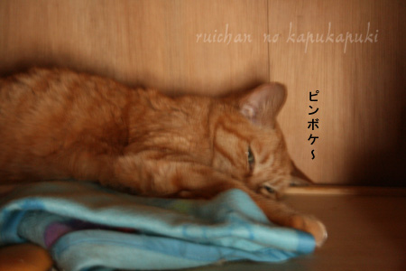 20080713_mitawane_004.jpg