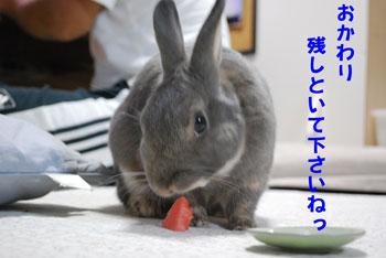 1_20080727111426.jpg