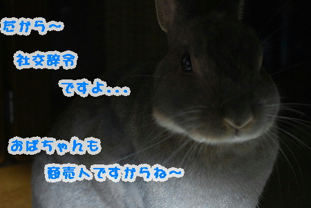 mimi_20080527212413.jpg