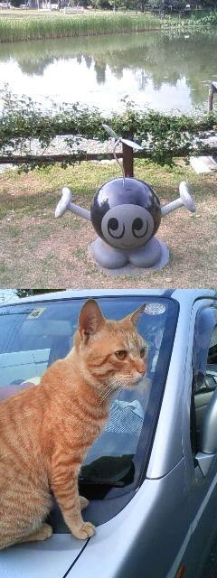 花博のジバクくんと飛び乗り猫様