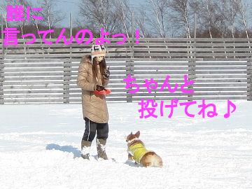 002_20090213034420.jpg