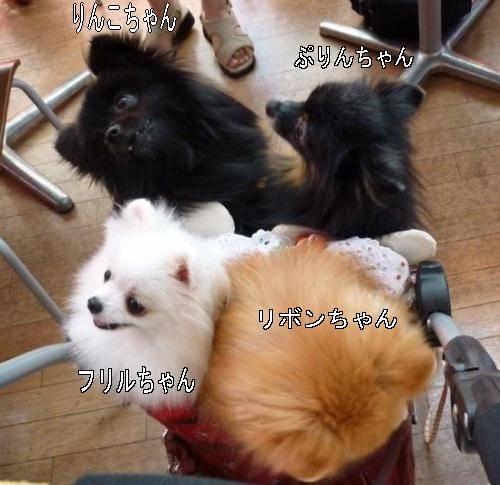 10103-500moji.jpg