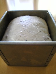 ご飯パン発酵