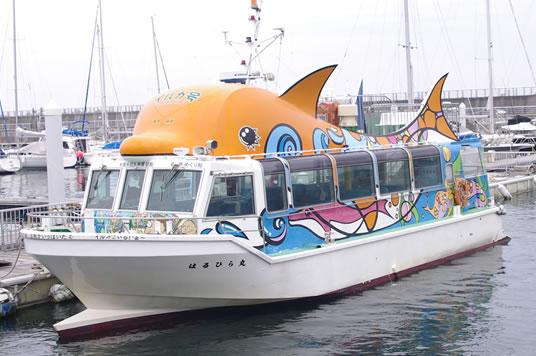 はるひら丸イルカ号遊覧船