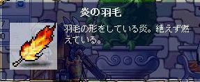 シグナス0031