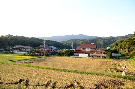 稲刈り終了の田んぼ