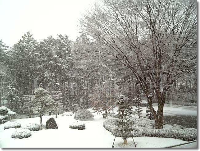 3・10 雪1