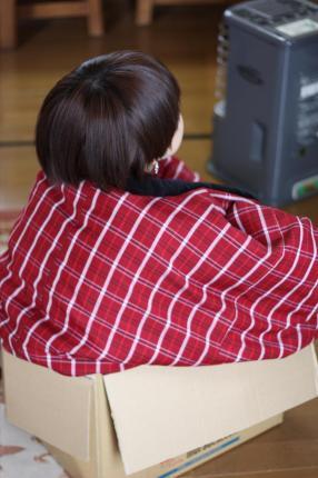 箱入り娘_convert_20081125224718