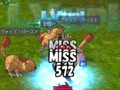 ss20090329_03.jpg