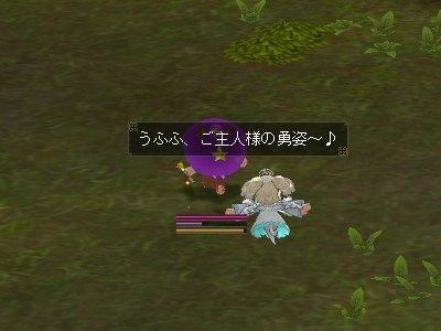 ss20090719_02.jpg